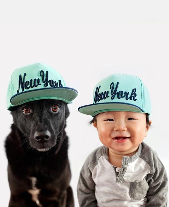 Foto divertenti new york