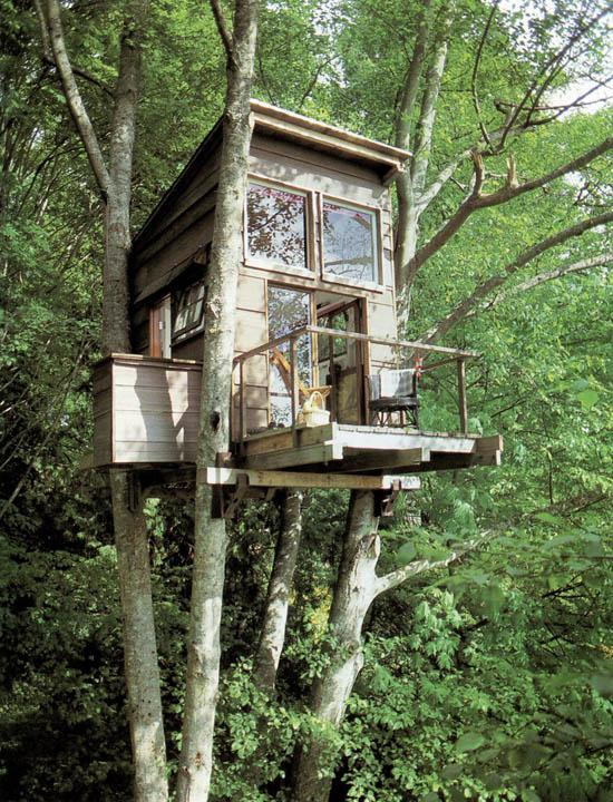 Foto casa sull 39 albero - Casa sull albero minecraft ...
