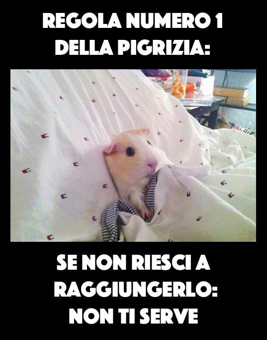 Foto topolino che dorme nel letto - Ragazze nel letto ...