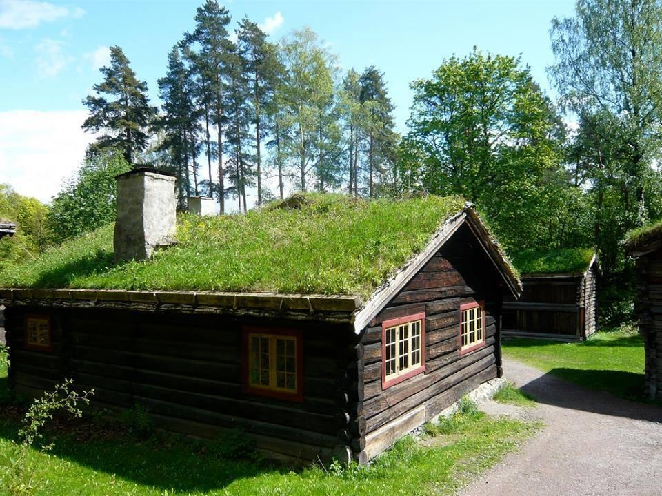 Immagini e foto assurde e gesti folli pagina 34 for Casas en noruega