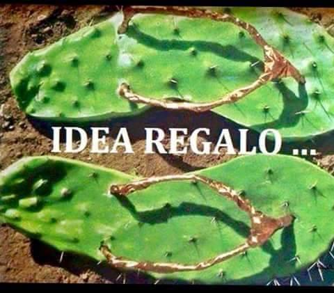 Barzellettenet Foto Ciabatte Infradito A Forma Di Cactus