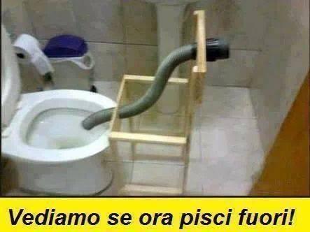 frasi simpatiche wc