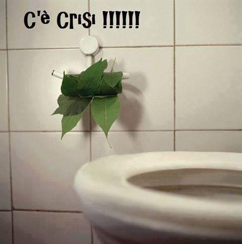 Foto foglie di albero al posto della carta igienica - Albero porta carta igienica ...