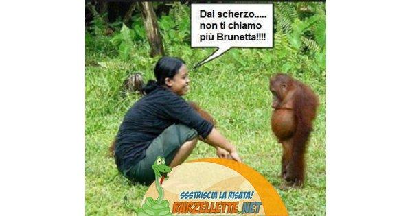 Barzellette Net Foto Donna Che Parla Con Scimmia Paragonata A