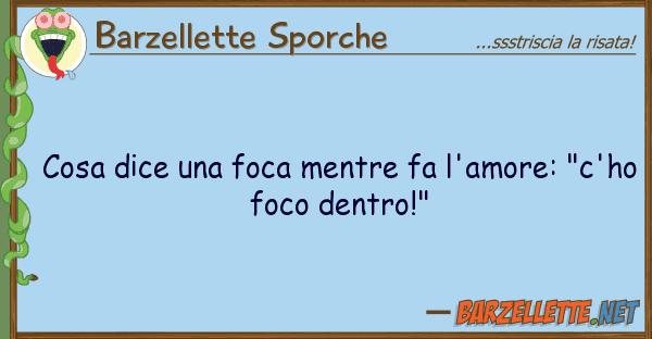 """Barzellette Sporche cosa dice foca mentre fa l'amore: """"c"""