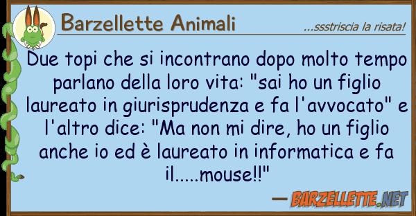 Barzellette Animali due topi incontrano dopo molto te