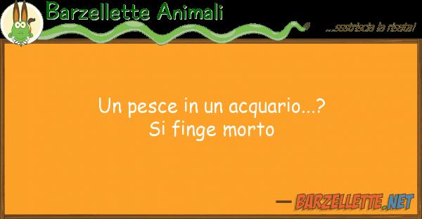 Barzellette Animali pesce acquario...? finge mor