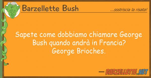Barzellette Bush sapete dobbiamo chiamare george bus