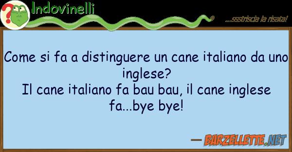 Indovinelli fa distinguere cane italian