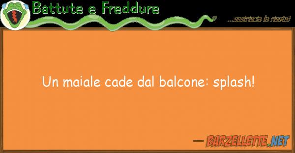Battute e Freddure maiale cade balcone: splash!