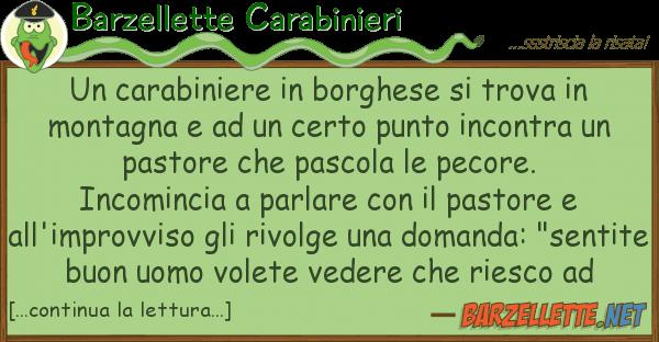 Barzellette Carabinieri carabiniere borghese trova m