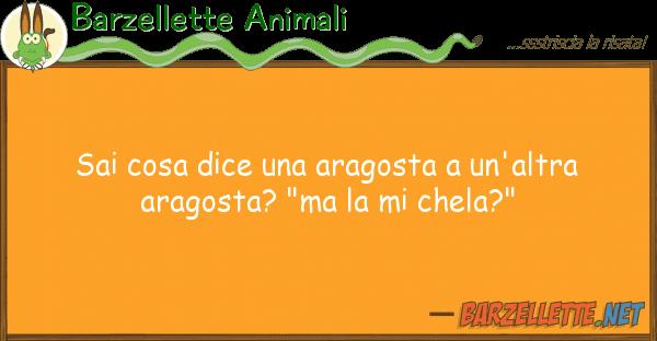 Barzellette Animali sai cosa dice aragosta un'altra ar