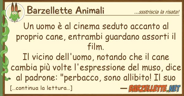 Barzellette Animali uomo ? cinema seduto accanto pr