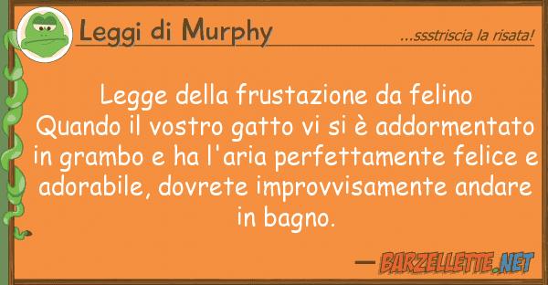 Leggi di Murphy legge frustazione felino quando