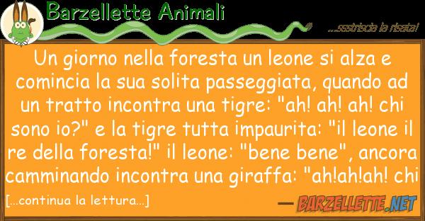 Barzellette Animali giorno foresta leone alza