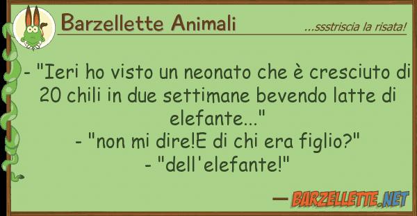 """Barzellette Animali - """"ieri ho visto neonato ? cresci"""