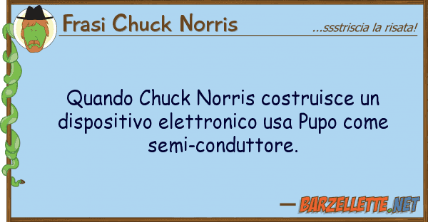 Frasi Chuck Norris quando chuck norris costruisce dispos