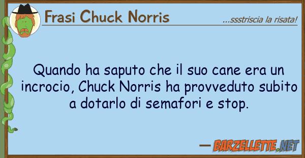 Frasi Chuck Norris quando ha saputo cane era