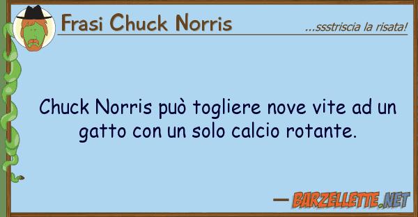 Frasi Chuck Norris chuck norris pu? togliere nove vite u