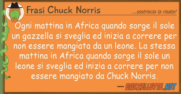 Frasi Chuck Norris ogni mattina africa quando sorge s