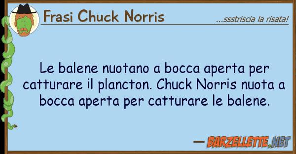 Frasi Chuck Norris balene nuotano bocca aperta cat