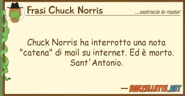 "Frasi Chuck Norris chuck norris ha interrotto nota ""cat"