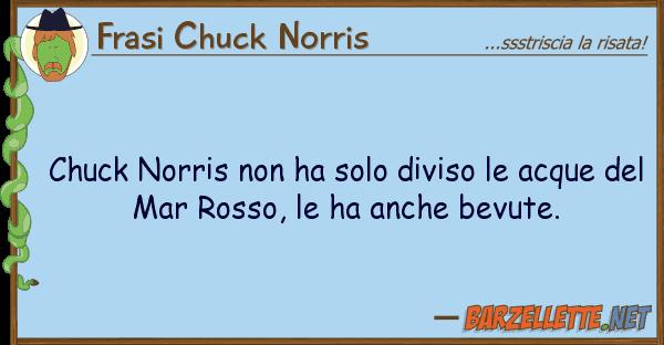 Frasi Chuck Norris chuck norris ha solo diviso acque