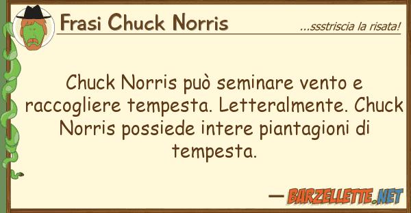 Barzelletta Chuck Norris Può Seminare Vento E Raccogliere Tempesta