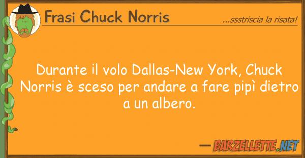 Barzelletta durante il volo dallas new york chuck norris sceso - Andare spesso in bagno a fare pipi ...