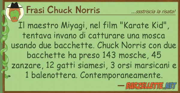 """Frasi Chuck Norris maestro miyagi, film """"karate kid"""""""