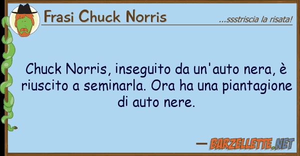 Frasi Chuck Norris chuck norris, inseguito un'auto nera,