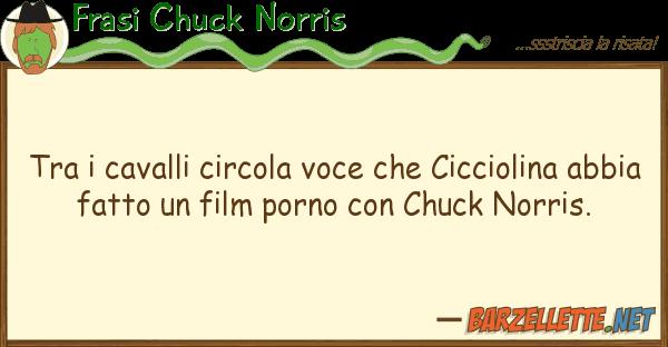 Frasi Chuck Norris cavalli circola voce cicciolin