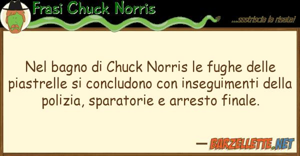 Barzelletta: Nel bagno di Chuck Norris le fughe delle piastrelle...