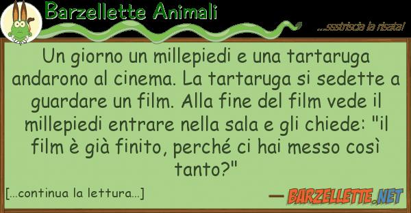 Barzellette Animali giorno millepiedi tartaruga