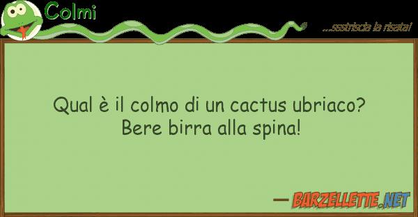 Barzellettenet Colmi Qual è Il Colmo Di Un Cactus Ubriaco