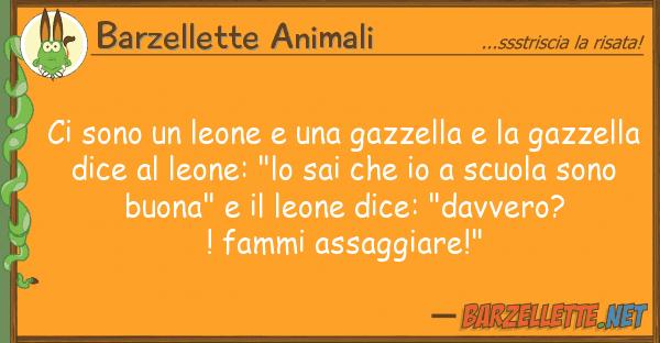 Barzellette Animali sono leone gazzella gaz