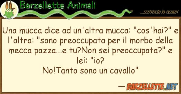 """Barzellette Animali mucca dice un'altra mucca: """"cos'h"""