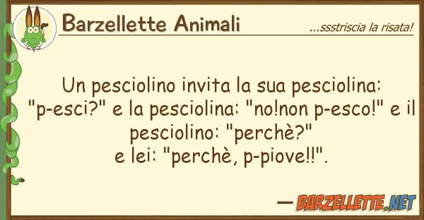 Barzellette Animali pesciolino invita pesciolina:
