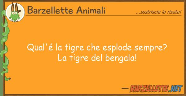 Barzellette Animali qual'? tigre esplode sempre? t