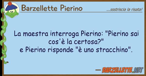 "Barzellette Pierino maestra interroga pierino: ""pierino s"