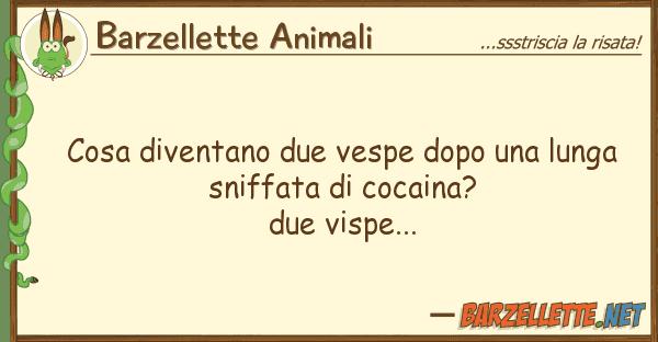 Barzellette Animali cosa diventano due vespe dopo lunga