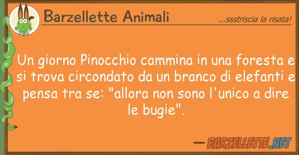 Barzellette Animali giorno pinocchio cammina fores