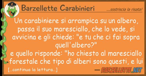 Barzellette Carabinieri carabiniere arrampica albero