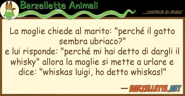 """Barzellette Animali moglie chiede marito: """"perch? g"""
