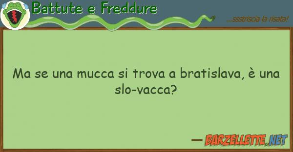 Battute e Freddure mucca trova bratislava, ?