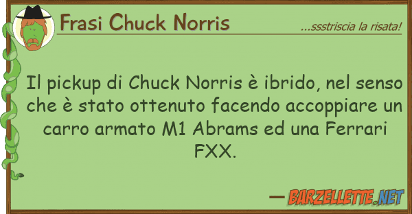 Frasi Chuck Norris pickup chuck norris ? ibrido,