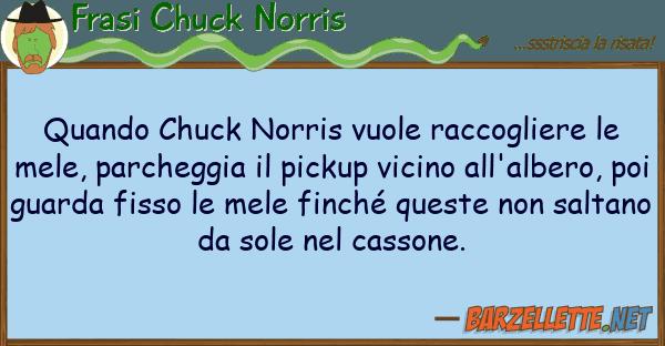 Frasi Chuck Norris quando chuck norris vuole raccogliere