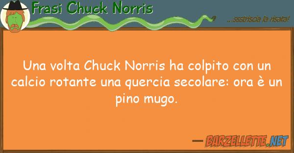 Frasi Chuck Norris volta chuck norris ha colpito