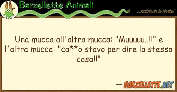 "Barzellette Animali mucca all'altra mucca: ""muuuuu..!!"""