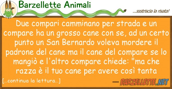 Barzellette Animali due compari camminano strada co